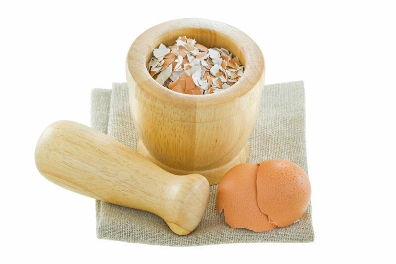 Удобрение из яичной скорлупы: копеечное средство для огорода