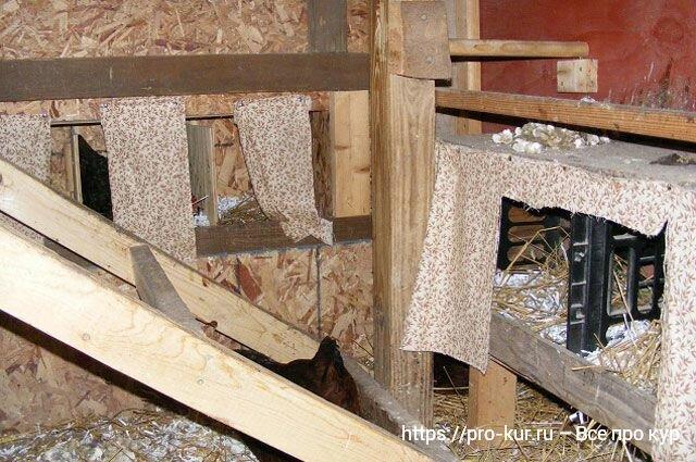 Как сделать гнезда для кур-несушек своими руками быстро и просто