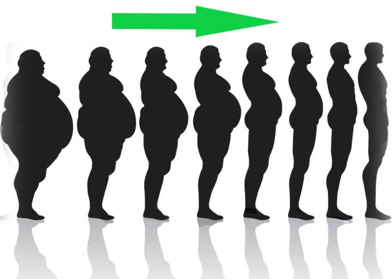 Почему вы не худеете? 15 ошибок в диете (научный подход)