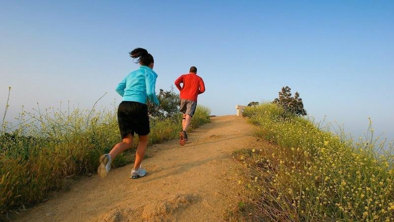 Какие виды бега включать в тренировку